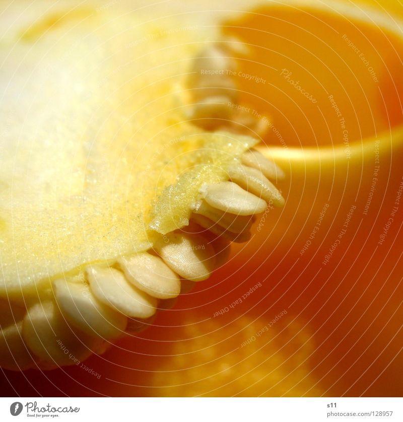 PaprikaDetail III Natur grün weiß Pflanze gelb Linie Lebensmittel Ernährung Gesunde Ernährung Kochen & Garen & Backen Gemüse Appetit & Hunger Stengel Quadrat Hälfte Samen