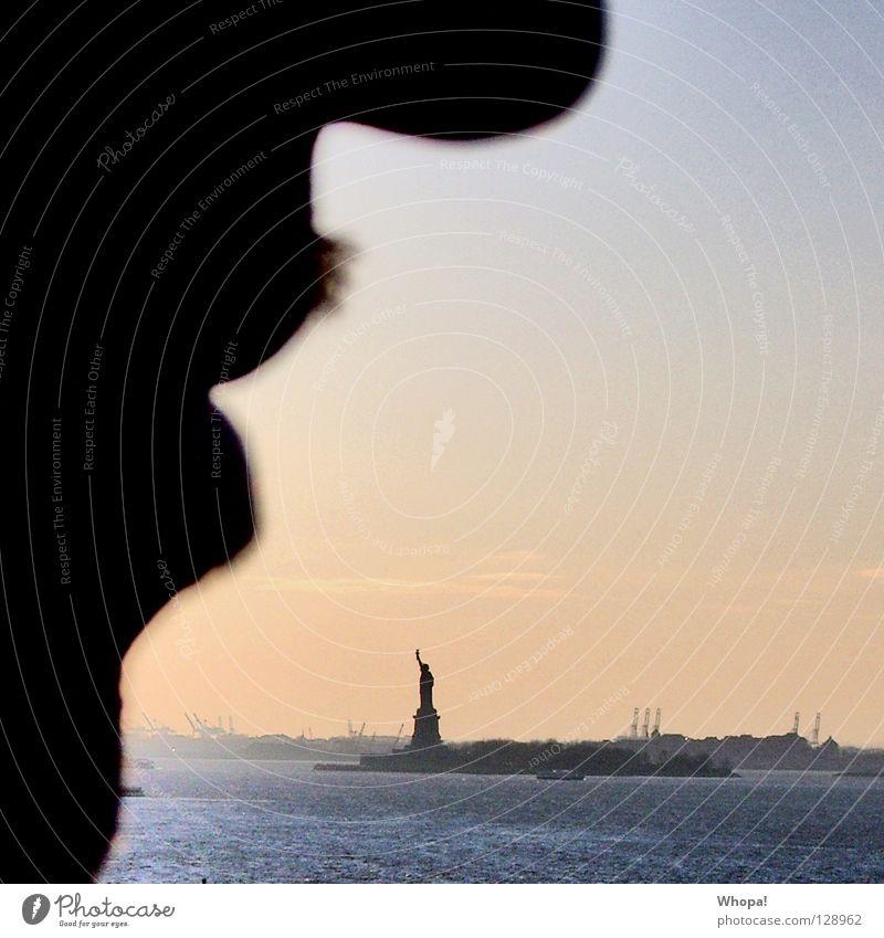 Freiheitsprofil Mann Wasser Mund Nase USA Romantik Bart New York City Freiheitsstatue Brooklyn