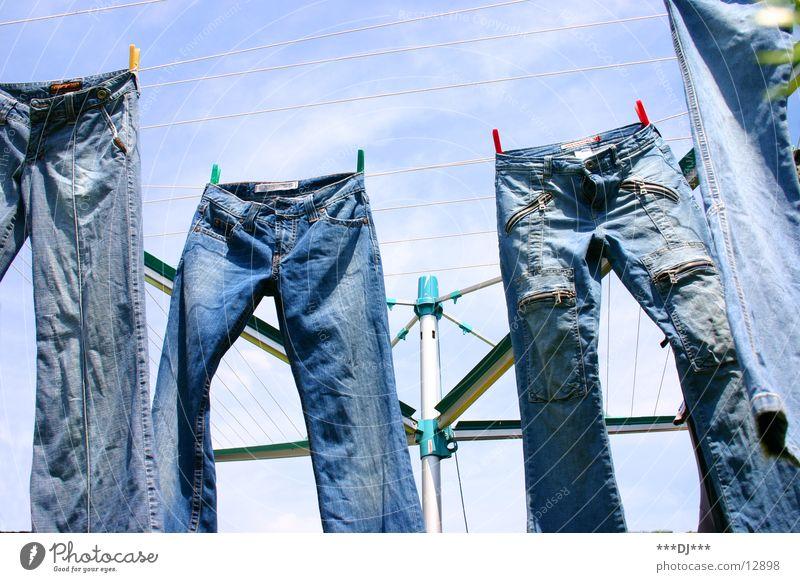 Hanging Pants Hose Wäsche hängen trocknen Wäscheleine Spinne Freizeit & Hobby Jeanshose Himmel blau Denim Wäsche waschen Waschtag