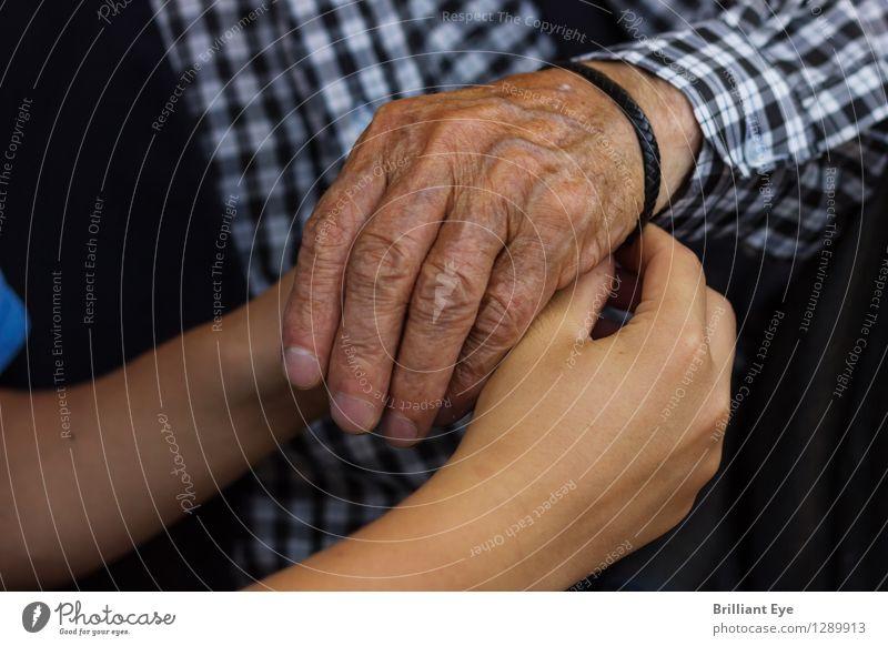 Was nicht passt wird passend gemacht Sommer Kind Mensch maskulin Junge Großvater Familie & Verwandtschaft Kindheit Senior Hand Finger Natur Liebe authentisch