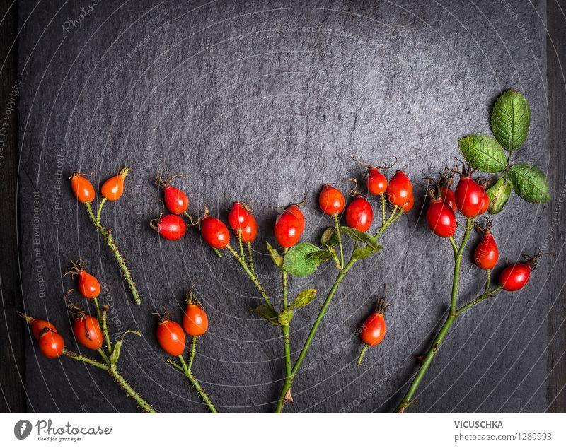 Hagebutten Früchte auf dunklem Hintergrund Natur Pflanze Blatt Leben Herbst Stil Hintergrundbild Gesundheit Lebensmittel Design Frucht Dekoration & Verzierung