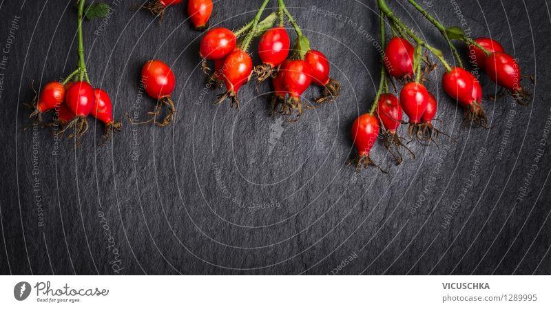 Hagebutten auf dunklem Hintergrund Lebensmittel Frucht Ernährung Tee Stil Design Gesundheit Alternativmedizin Gesunde Ernährung Sommer Garten