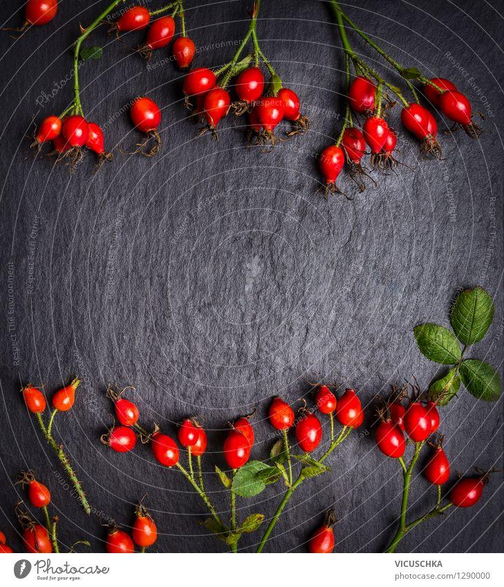 Hagebutten auf dunklem Schiefer Hintergrund, Ansicht von oben Natur Pflanze Gesunde Ernährung rot Leben Herbst Stil Hintergrundbild Garten Lebensmittel Design Frucht Dekoration & Verzierung Ernährung Tisch retro