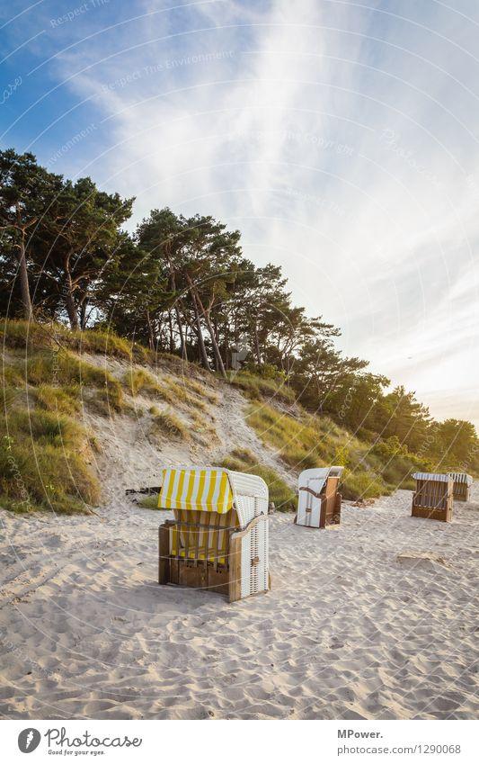 zempin Umwelt Natur Landschaft Sand Wind Tourismus Ferien & Urlaub & Reisen Ostsee Strand Strandkorb Düne Wald Sonnenuntergang Badeort Himmel Wolken