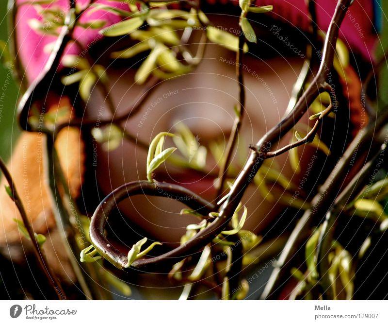Eckstein, Eckstein, ... Mensch Gesicht Pflanze Sträucher Zweige u. Äste Kindheit verstecken Versteck Farbfoto Tag Unschärfe Schwache Tiefenschärfe