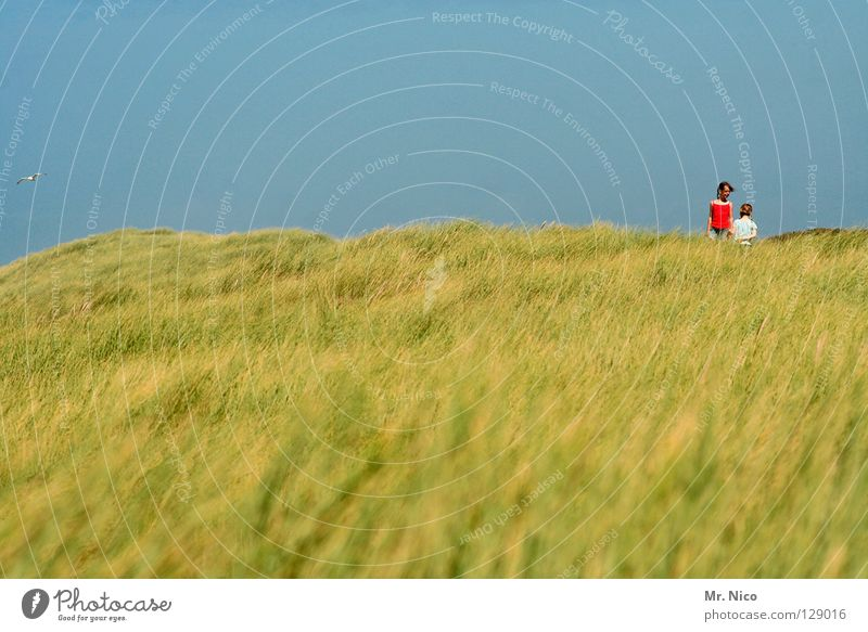 dos Kind Himmel weiß grün blau Mädchen rot Sommer Freude Strand Ferien & Urlaub & Reisen Meer Landschaft Gras Küste klein