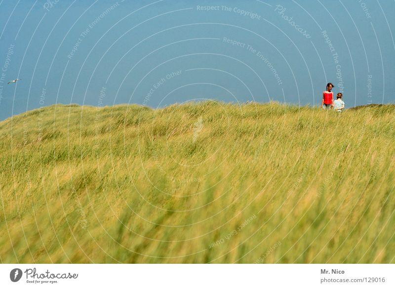 dos Niederlande Zeeland Gras Ferien & Urlaub & Reisen Meer Sommer Panorama (Aussicht) Küste Mädchen Kind 2 klein groß blond dunkelhaarig rot T-Shirt weiß