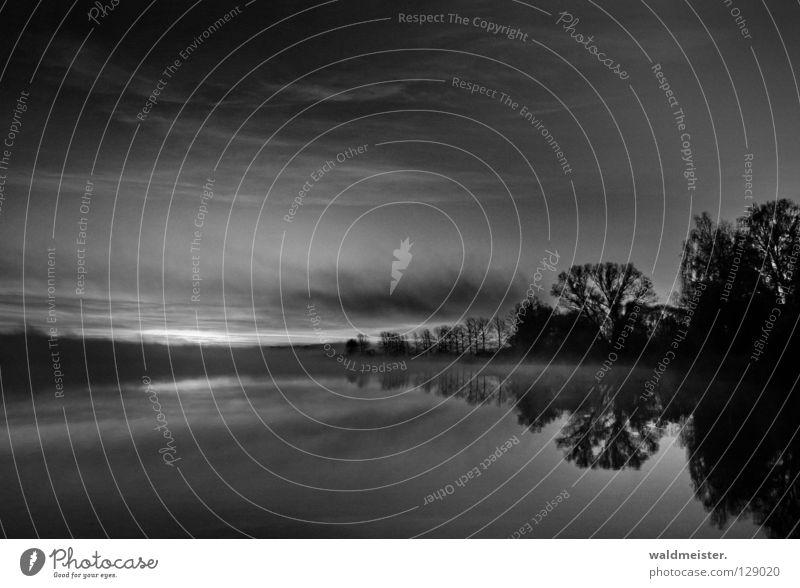 Schwarzer Morgen Wasser Himmel Baum ruhig Wolken kalt Herbst See Nebel Morgennebel
