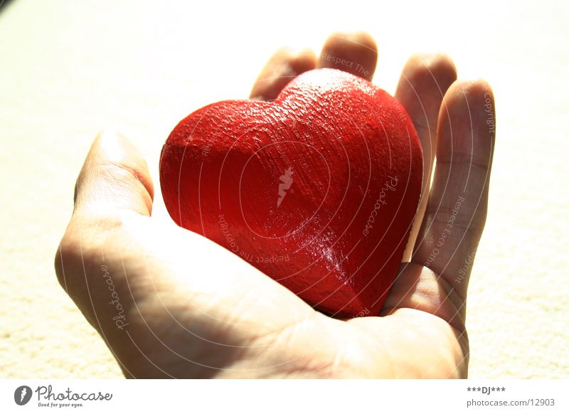 Eine Hand voll Herz! Finger Dinge Liebe Arme Valentinstag