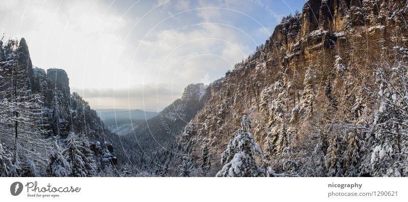 Winterzauber in der Böhmischen Schweiz Umwelt Natur Landschaft Himmel Wolken Sonnenaufgang Sonnenuntergang Klima Schönes Wetter Schnee Baum Wald Hügel Felsen