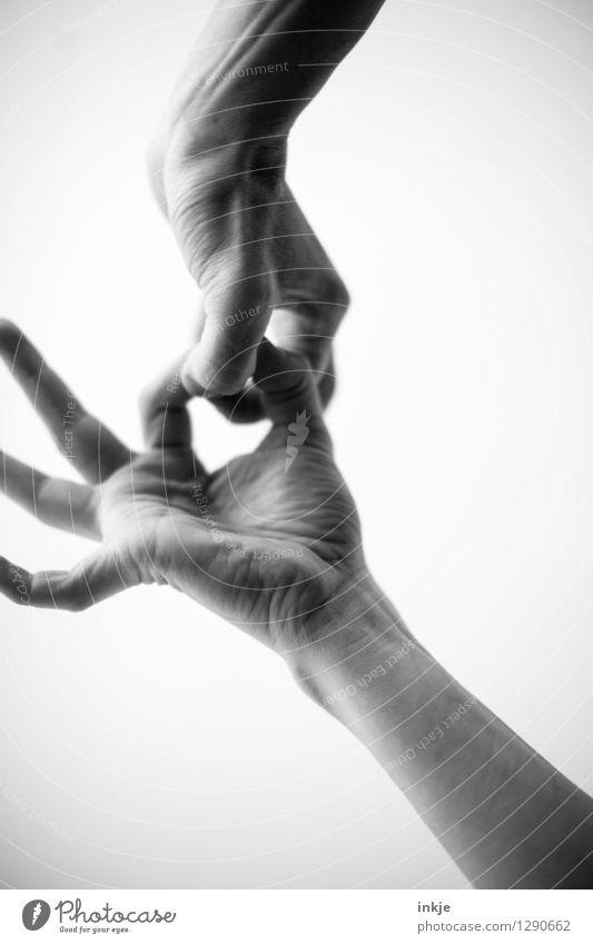 ---->OO<---- Lifestyle Freizeit & Hobby Mensch Erwachsene Leben Hand Finger 1 2 festhalten Kommunizieren machen Zusammensein Gefühle Stimmung Einigkeit loyal