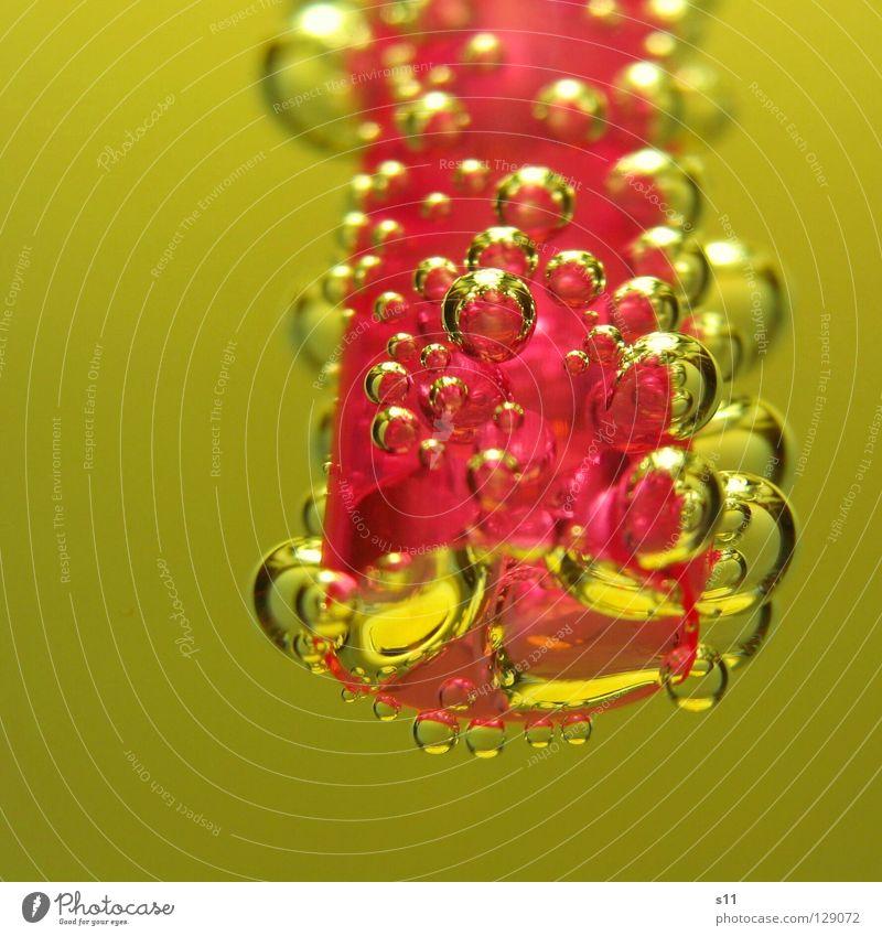 GoldPerls Farbe gelb rosa glänzend Luft Glas gold Getränk nass süß niedlich rund Küche trinken Flüssigkeit Kugel