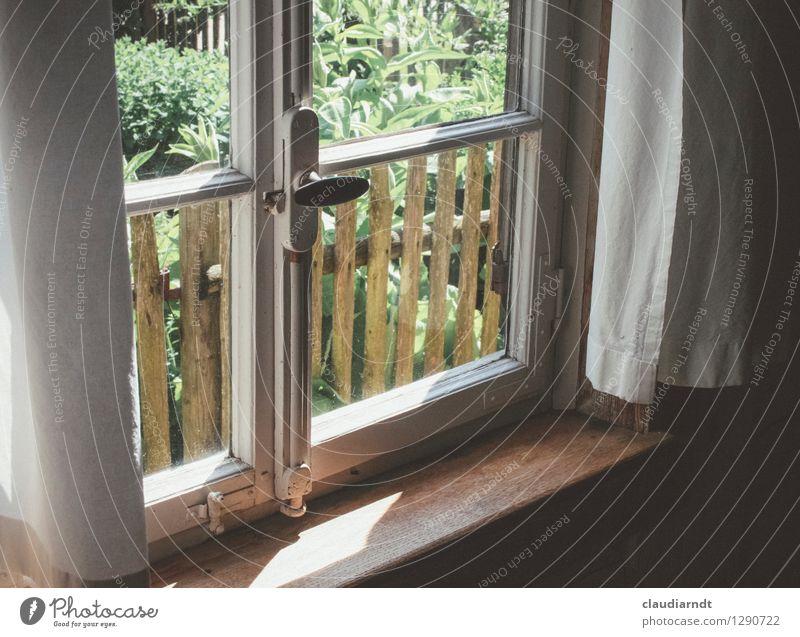 Sommertag Dorf Haus Garten Fenster alt historisch schön Wärme Geborgenheit Gardine Gartenzaun Sprossenfenster Bauerngarten Fensterbrett Fensterblick