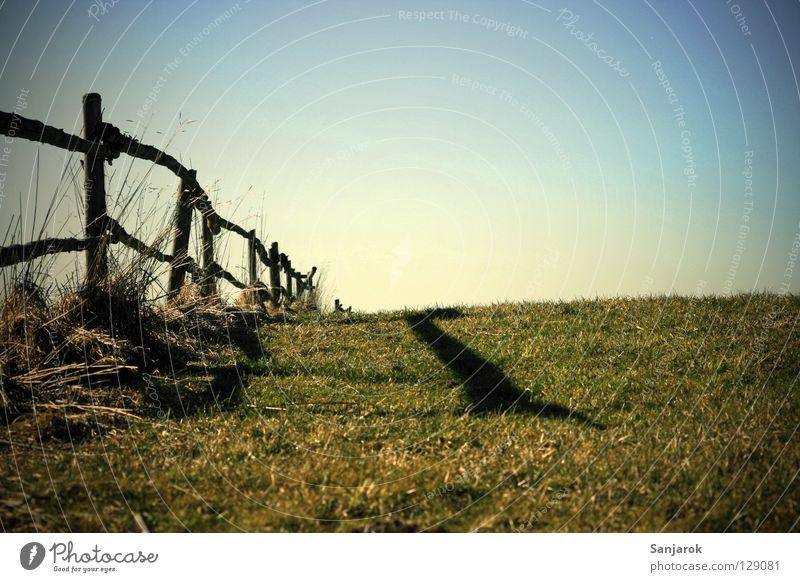 Auf der Alm', da gibts koa Sünd.. oder so Himmel Pflanze Sommer Frühling Wiese Herbst Gras Wege & Pfade Spaziergang Alpen Zaun Weide Barriere Grenze Kuh Am Rand