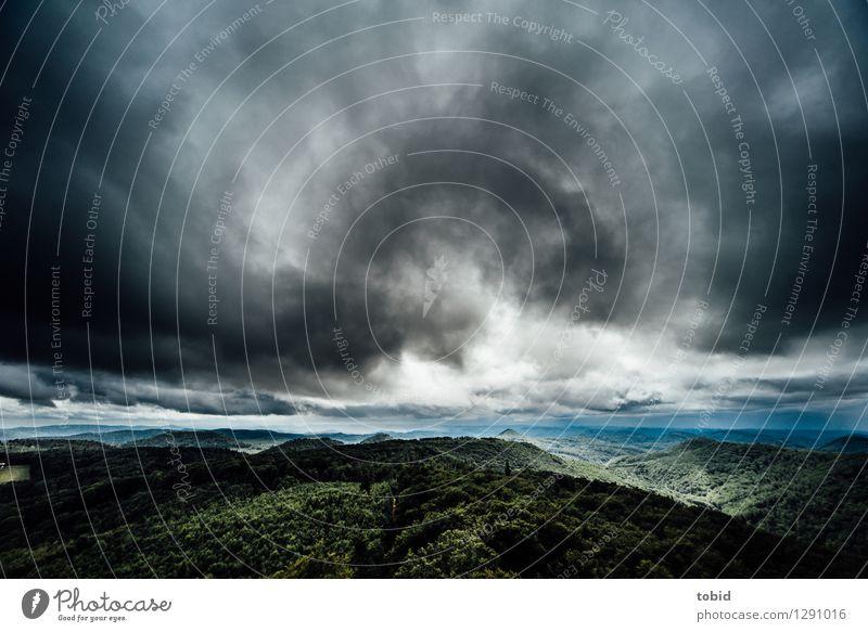 Licht am Horizont Natur Landschaft Pflanze Himmel Wolken Wetter schlechtes Wetter Wind Wald Hügel Berge u. Gebirge bedrohlich dunkel Unendlichkeit
