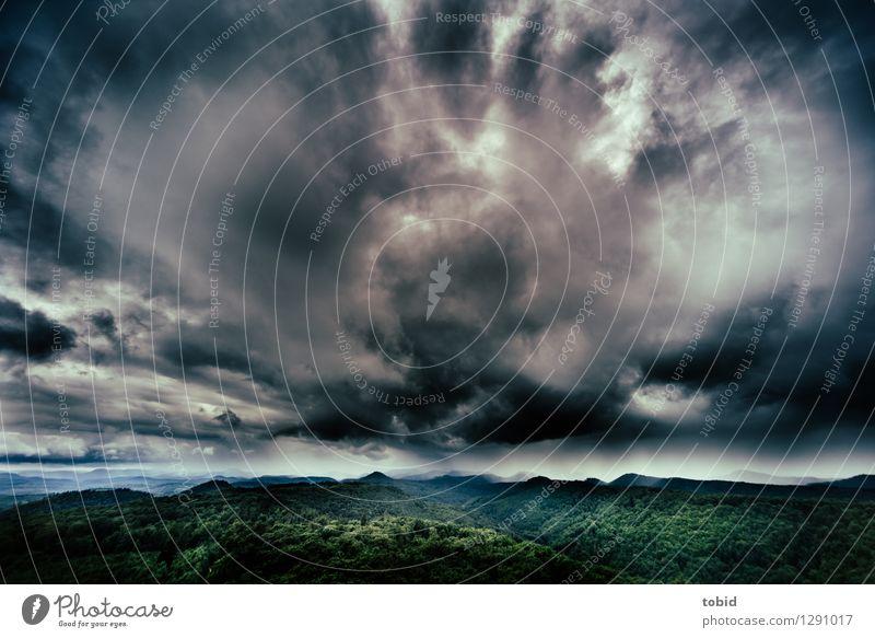 Urgewaltig Natur Landschaft Pflanze Himmel Wolken Gewitterwolken Horizont Sommer Herbst Wetter schlechtes Wetter Wind Sturm Baum Wald Hügel Berge u. Gebirge
