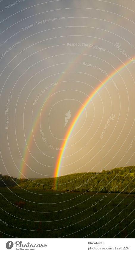 Leuchtreklame am Himmel Gewitterwolken Wetter Glück Regenbogen Doppelbelichtung Lichterscheinung Wiese Wald Vergänglichkeit Goldtopf ästhetisch Natur