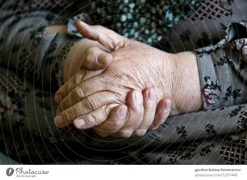old hands Mensch Frau alt Hand ruhig Erwachsene Senior feminin grau 60 und älter weich Hilfsbereitschaft Weiblicher Senior Glaube Gelassenheit Hautfalten