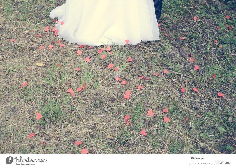 Wedding II Lifestyle elegant Stil Design Glück Hochzeit maskulin feminin Junge Frau Jugendliche Junger Mann Paar Beine 2 Mensch Schönes Wetter Gras Kleid Anzug