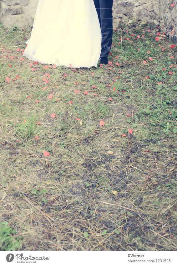 Wedding I Lifestyle elegant Stil schön Feste & Feiern Hochzeit maskulin feminin Junge Frau Jugendliche Junger Mann Paar Beine 2 Mensch Schönes Wetter Gras Kleid