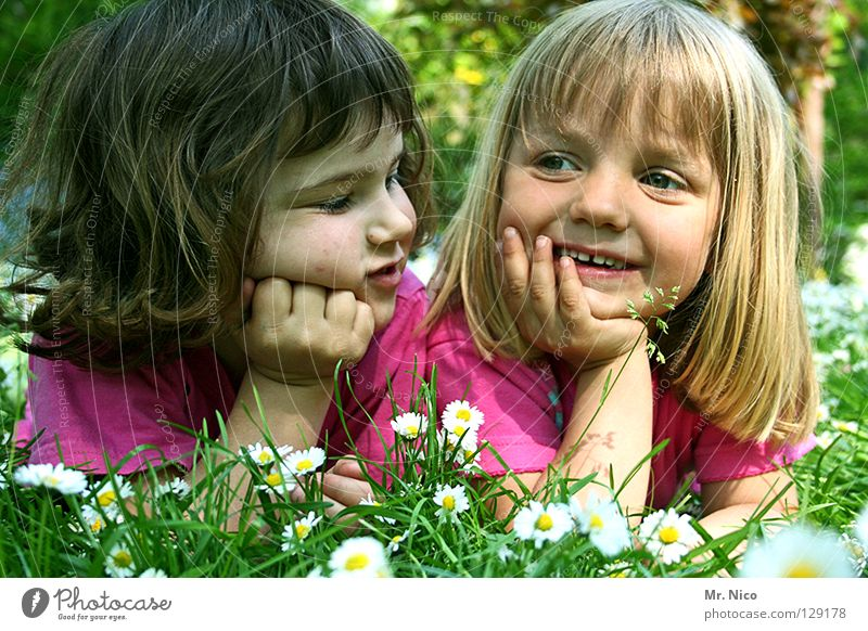 girlfriends Kopfstütze Freundschaft Aussehen sommerlich Mädchen 2 niedlich schön blond dunkelhaarig grinsen Fröhlichkeit wach Zufriedenheit Wiese Gänseblümchen