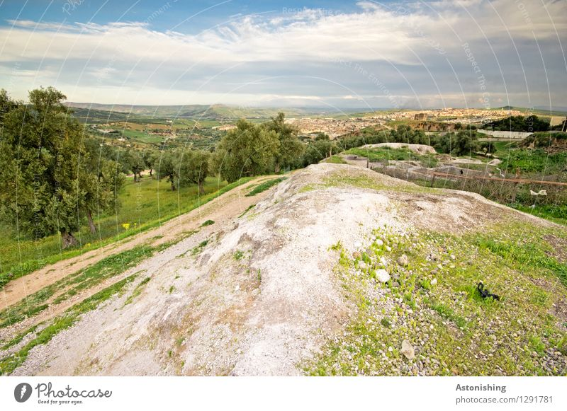 Blick auf Fès Umwelt Natur Landschaft Himmel Wolken Horizont Sommer Wetter Schönes Wetter Pflanze Baum Gras Sträucher Wiese Wald Hügel Felsen Fes Marokko Afrika