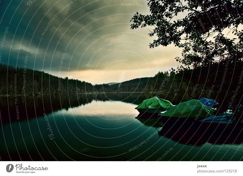 Stille Abdeckung Abend Abenddämmerung Baum bedrohlich Wasserfahrzeug Dämmerung Erholung Farbenspiel Fischerboot grün Herbst Horizont kalt Naturliebe Regenwolken