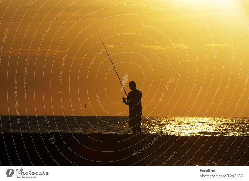 Heut beißen sie nicht! Mensch maskulin Mann Erwachsene Leben 1 Umwelt Natur Urelemente Wasser Himmel Wolken Sommer Schönes Wetter Küste Nordsee Meer maritim