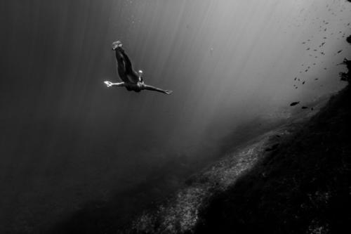 Frauentauchen in der Unterwasserlandschaft Mensch Natur Jugendliche schön Wasser Junge Frau Erholung Meer Landschaft Gesunde Ernährung ruhig Strand 18-30 Jahre