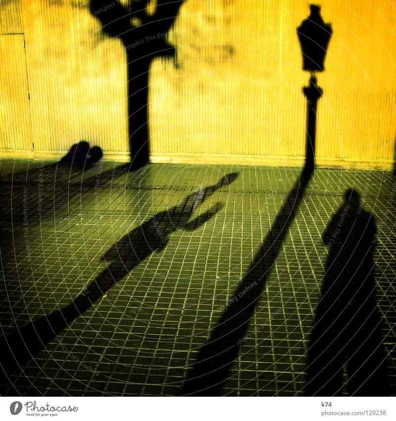SHADOW Mensch Wand gelb grau Baum Laterne Licht Küssen Umarmen Stadt gehen Verkehrswege Schatten Paar Päärchen couple shadow street Straße grgün grey Kontrast