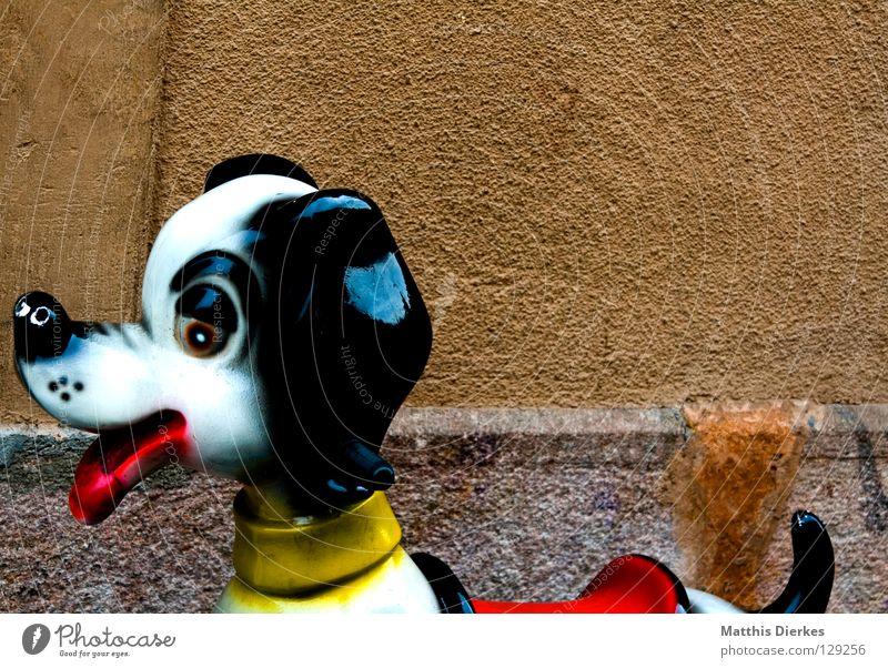 Mischling Himmel alt Stadt Tier Auge Wand Spielen Hund Mauer Kindheit Statue Verkehrswege Spanien Hals Haustier Zunge