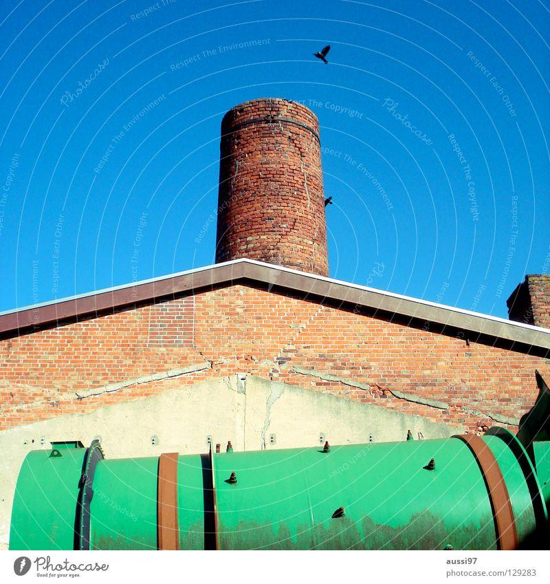Saatkrähe Industrie historisch brennen Schornstein Krähe Recycling Farbenspiel Gemäuer Industriekultur Saatkrähe Grüne Tonne