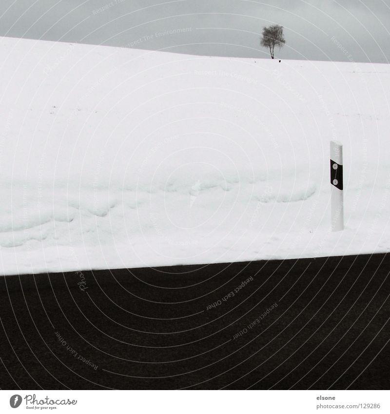 ::TRISECTION:: Himmel weiß Baum Winter schwarz Straße Schnee Berge u. Gebirge grau Beton 3 Asphalt Verkehrswege wenige sehr wenige
