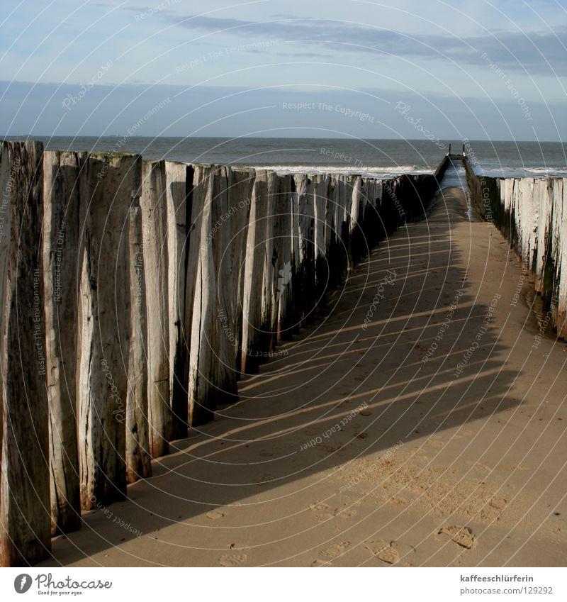 Strandwächter Meer Herbst Sand Wellen Küste Schutz Niederlande Flut Ebbe Buhne Schutzfunktion