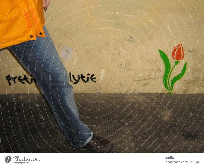 Eine Tulpe für das weibliche Geschlecht alt Blume grün rot gelb Wand Frühling grau Beine Graffiti frisch Europa Jeanshose trist Blühend