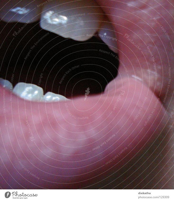 Read my lips! Mensch rot Mund offen Zähne Lippen nah Gesichtsausdruck Anschnitt Bildausschnitt Schneidezahn Unterlippe