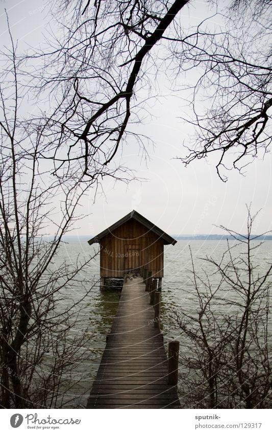 my home is my castle Wasser Baum Winter Haus See Horizont Hütte Steg Bayern Zweig Ammersee