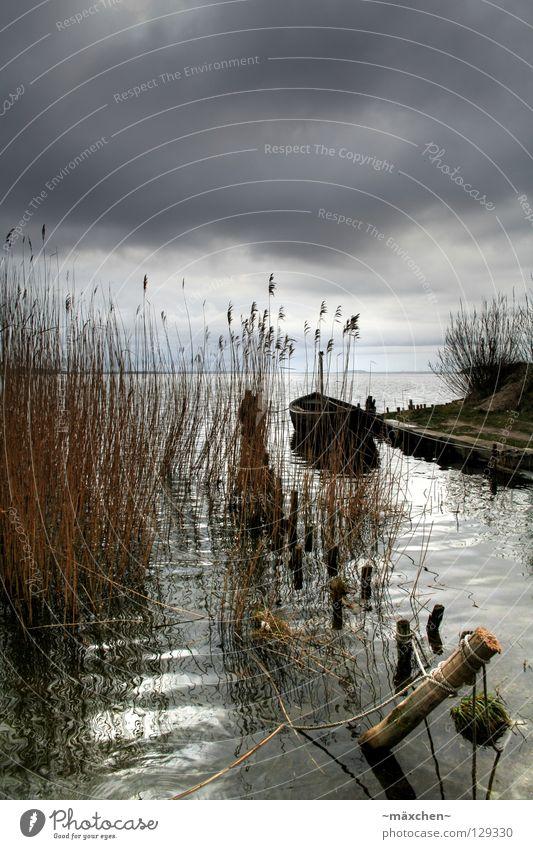 Idylle vor dem Sturm Meer Wasserfahrzeug Steg Wellen Schilfrohr Holz HDR Wolken dunkel Fischerboot Unwetter Gras Einsamkeit ruhig Baumstamm Usedom Schifffahrt