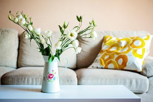 Farbe zu Hause Wohnung Innenarchitektur Dekoration & Verzierung Sofa Tisch Wohnzimmer Sommer Rose Wüste Metall elegant frisch Frieden Gelassenheit Zufriedenheit