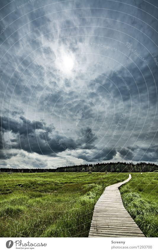 Schlechtwetter Venn Himmel Natur Ferien & Urlaub & Reisen blau Pflanze grün Sommer Baum Landschaft ruhig Wolken Wege & Pfade Gras braun Tourismus Idylle