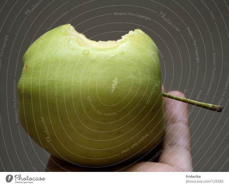 abbiss Frucht Apfel Ernährung Diät Fasten Gesundheit Wellness Kur Spa Sommer Hand Finger Natur Pflanze festhalten frisch lecker rund saftig grau grün knackig