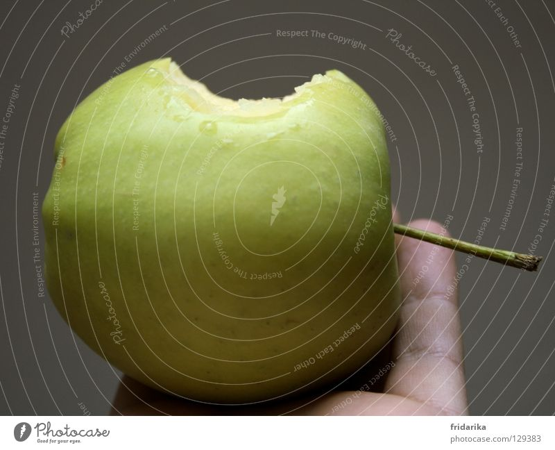 abbiss Natur Hand grün Pflanze Sommer Ernährung grau Gesundheit Essen Frucht Finger frisch Wellness rund Apfel Stengel
