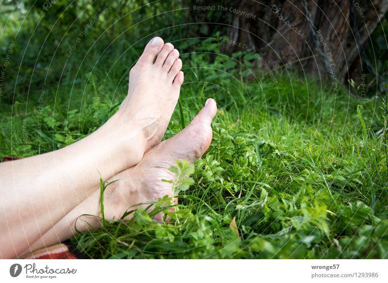 Auszeit feminin Frau Erwachsene Beine Fuß 1 Mensch 45-60 Jahre Erholung liegen nackt natürlich braun grün rosa ruhig Erschöpfung Pause ausruhend Zehen