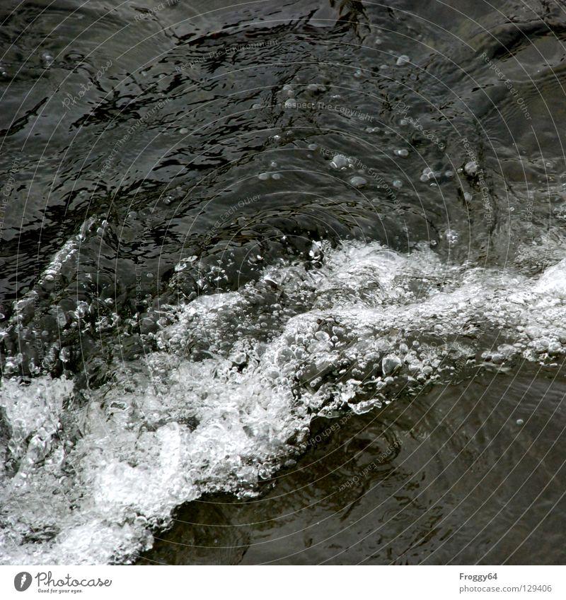 Wildwasser Wasser kalt Berge u. Gebirge Wellen nass Fluss Bach Luftblase Wasserfall Schaum spritzen Wasserwirbel Mineralwasser Wildbach