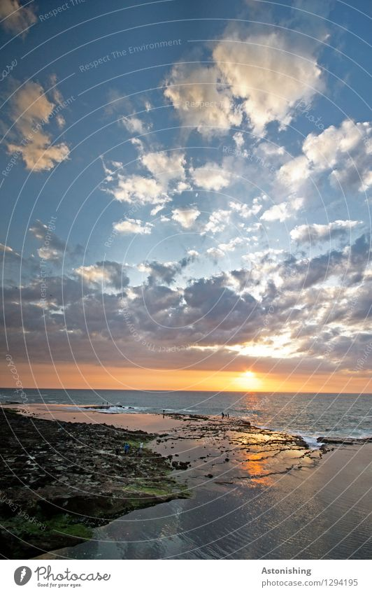Sonne trifft Meer Umwelt Natur Landschaft Wasser Himmel Wolken Horizont Sonnenaufgang Sonnenuntergang Sonnenlicht Sommer Wetter Schönes Wetter Felsen Atlantik