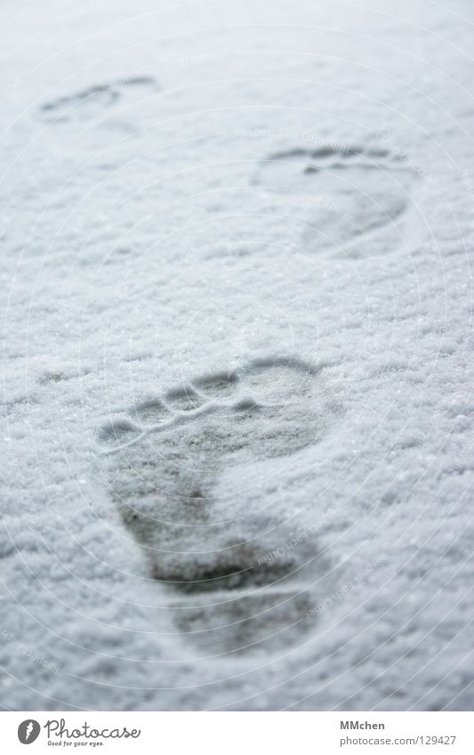 Spuren hinterlassen Fußspur Barfuß kalt frieren entkleiden vorwärts marschieren wandern verfolgen Winter weiß schießen Eindruck Fährte unterwegs Armut Zehen 5