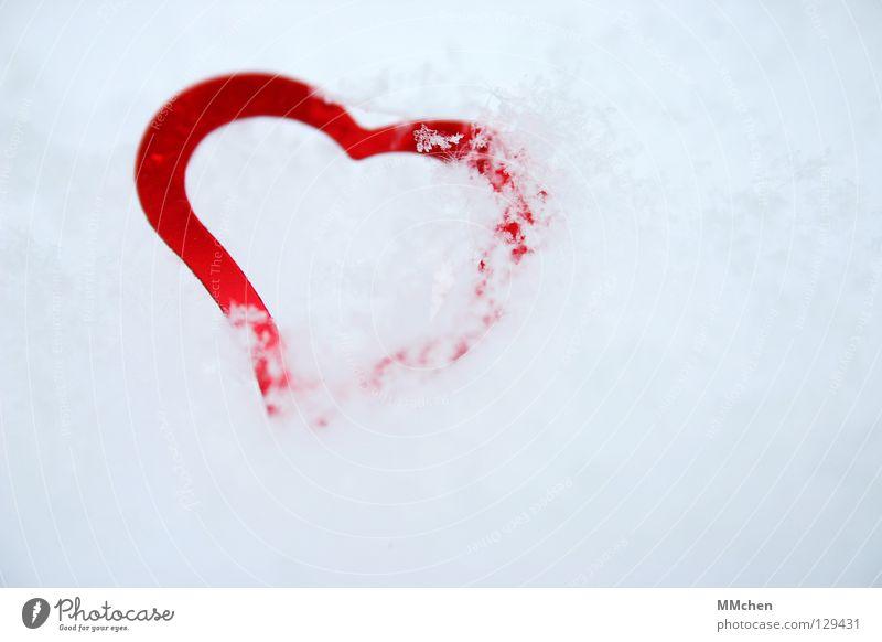 Herz aus Eis kalt Winter erfrieren vergangen herzlos verpackt rot weiß Liebe Schnee Kristallstrukturen erkaltet entliebt verstecken
