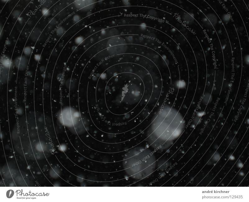 snow particles nr. 1 Winter Flocke Nacht Muster glänzend Makroaufnahme Nahaufnahme Schnee Feinstaub Willkür fallen Stern