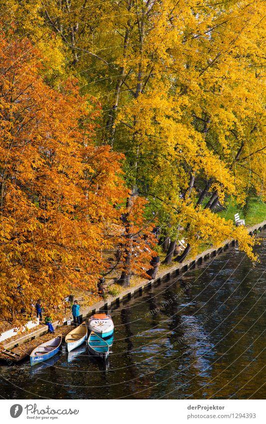 Der Herbst ist da Ferien & Urlaub & Reisen Tourismus Ausflug Abenteuer Freiheit Sightseeing Städtereise Kreuzfahrt Expedition Camping wandern Umwelt Natur