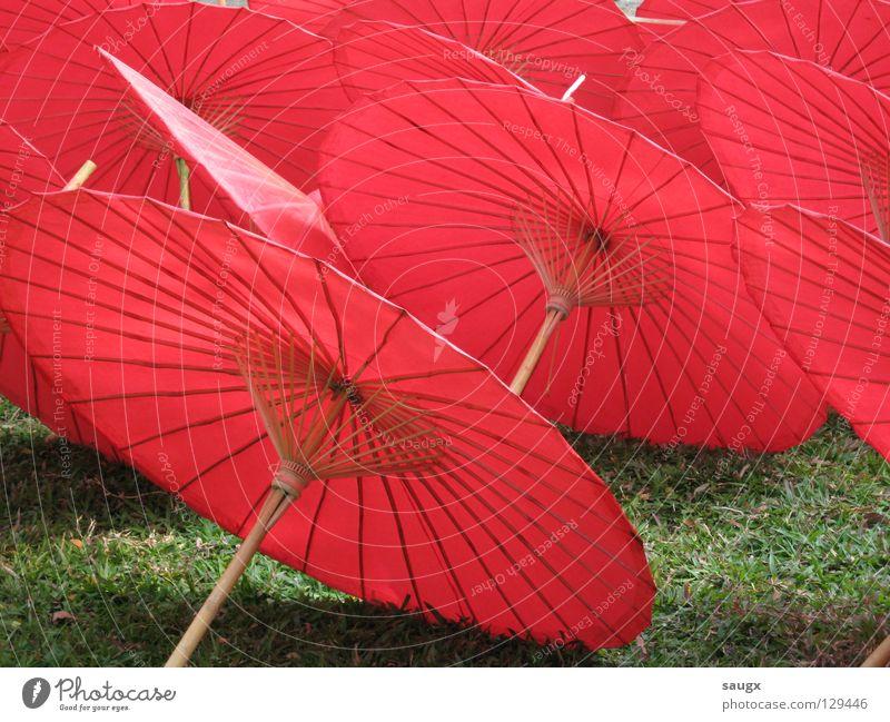 rote schirme Sonnenschirm Papier Asien Thailand Chiangmai Handwerk Ferien & Urlaub & Reisen Kunst Kunsthandwerk Farbe Sommer
